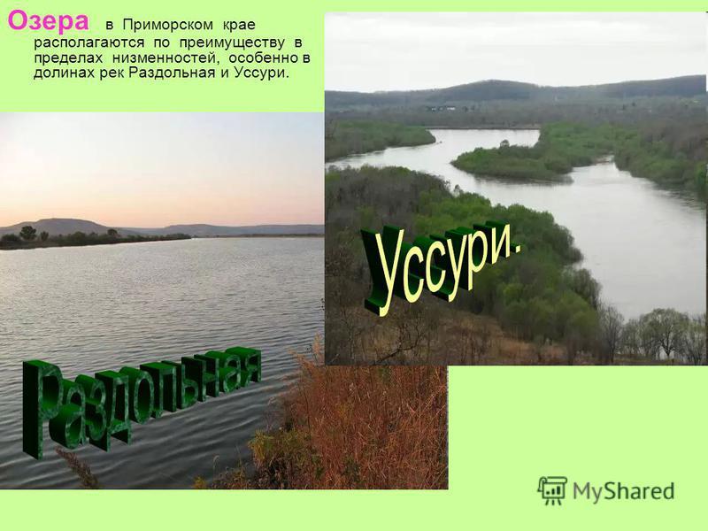 Озера в Приморском крае располагаются по преимуществу в пределах низменностей, особенно в долинах рек Раздольная и Уссури.