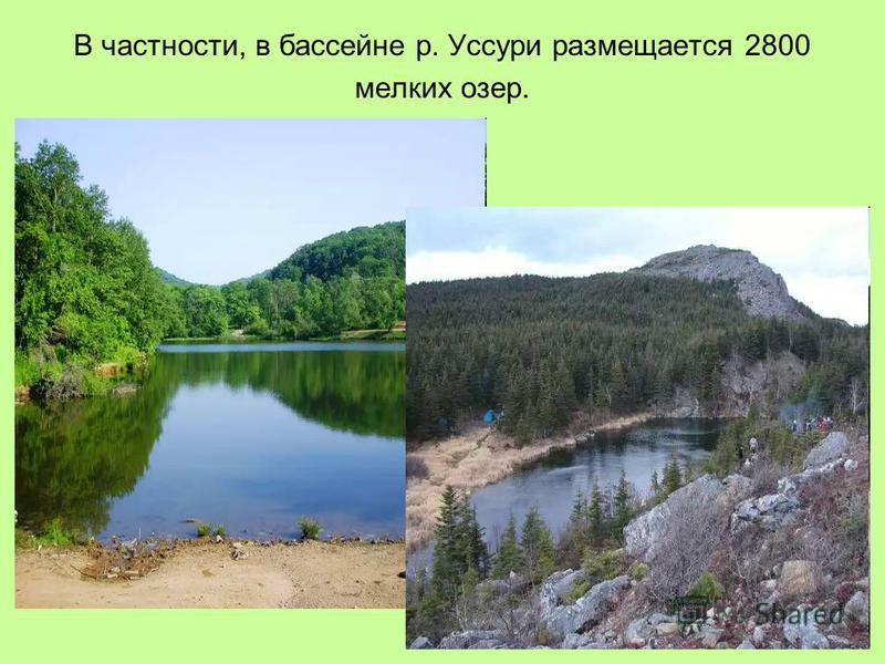 В частности, в бассейне р. Уссури размещается 2800 мелких озер.