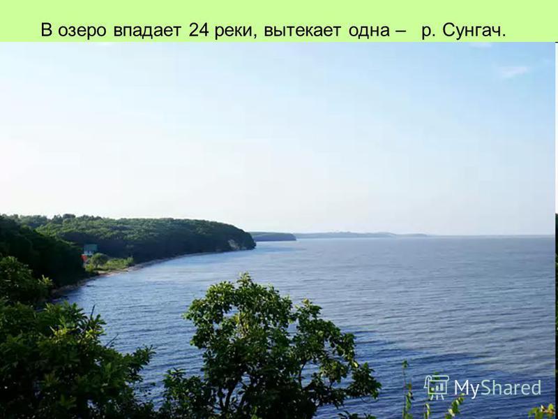 В озеро впадает 24 реки, вытекает одна – р. Сунгач.