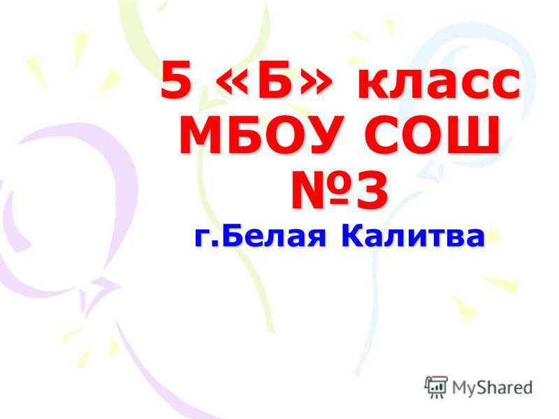 5 «Б» класс МБОУ СОШ 3 г.Белая Калитва