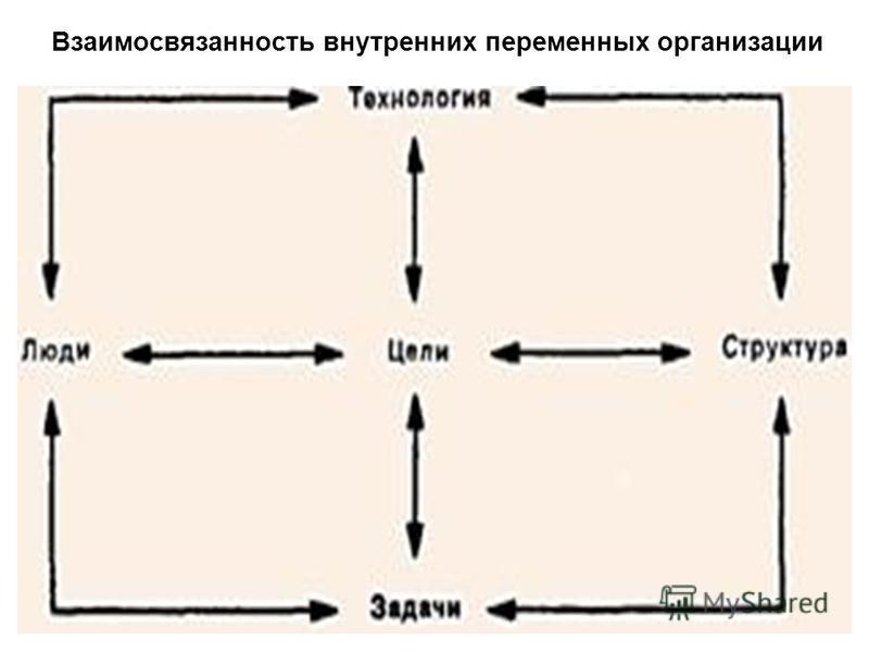 Взаимосвязанность внутренних переменных организации