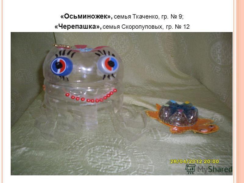 «Осьминожек», семья Ткаченко, гр. 9; «Черепашка», семья Скоропуповых, гр. 12