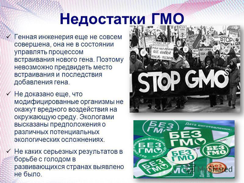 Недостатки ГМО Генная инженерия еще не совсем совершена, она не в состоянии управлять процессом встраивания нового гена. Поэтому невозможно предвидеть место встраивания и последствия добавления гена. Не доказано еще, что модификациированные органызмы
