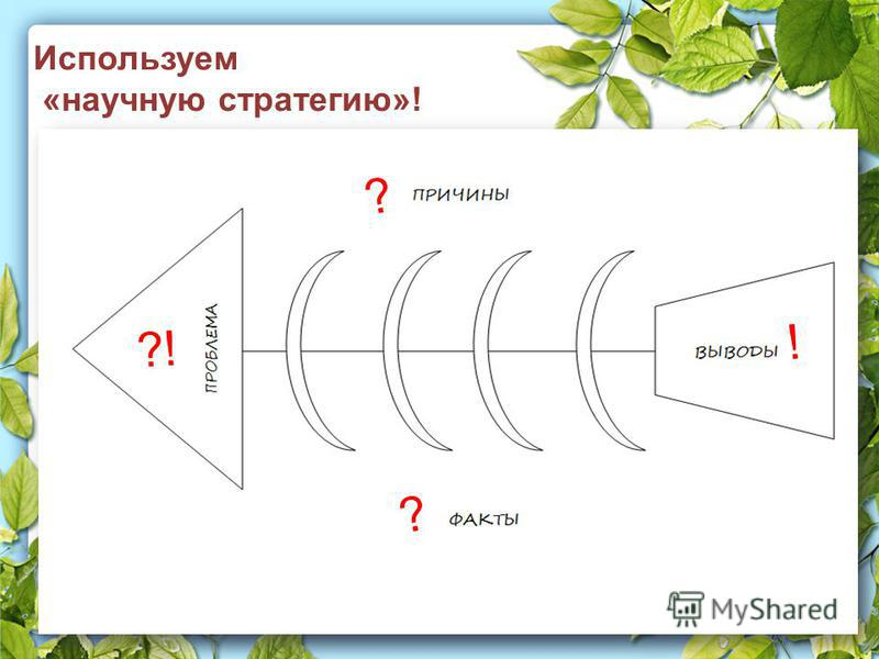 Используем «научную стратегию»! ?! ? ? !