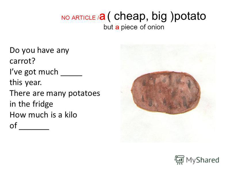 NO ARTICLE / a ( cheap, big )potato but a piece of onion Do you have any carrot? Ive got much _____ this year. There are many potatoes in the fridge How much is a kilo of _______