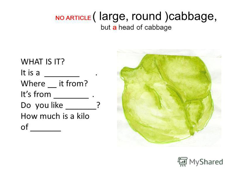 NO ARTICLE ( large, round )cabbage, but a head of cabbage WHAT IS IT? It is a ________. Where __ it from? Its from ________. Do you like _______? How much is a kilo of _______