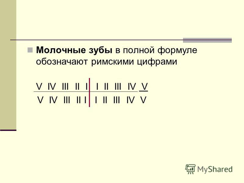 Молочные зубы в полной формуле обозначают римскими цифрами V IV III II I I II III IV V