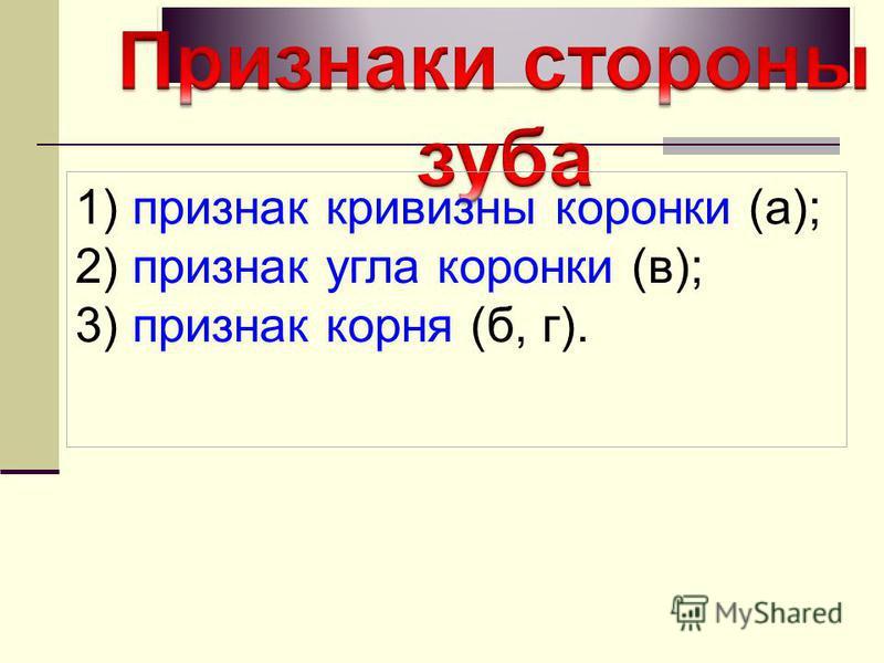 1) признак кривизны коронки (а); 2) признак угла коронки (в); 3) признак корня (б, г).