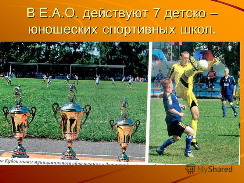 В Е.А.О. действуют 7 детско – юношеских спортивных школ.