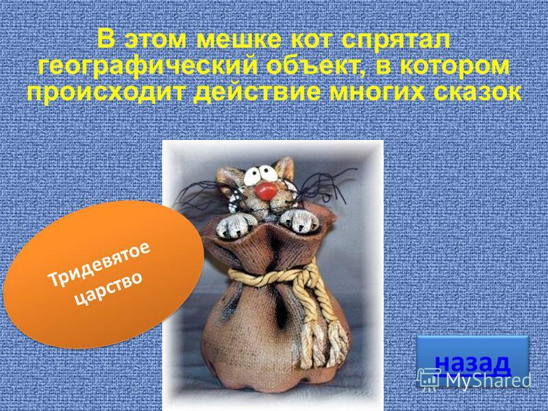 Тридевятое царство В этом мешке кот спрятал географический объект, в котором происходит действие многих сказок