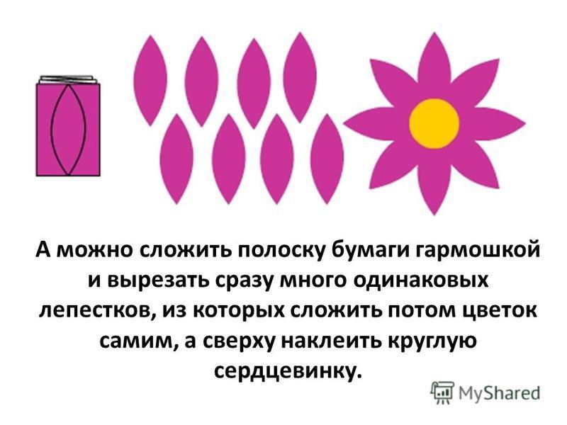 А можно сложить полоску бумаги гармошкой и вырезать сразу много одинаковых лепестков, из которых сложить потом цветок самим, а сверху наклеить круглую сердцевинку.
