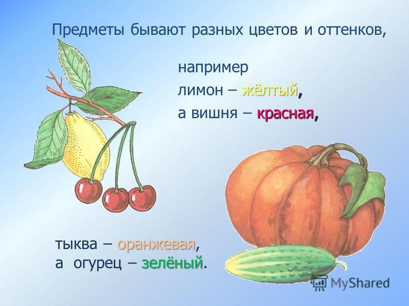 оранжевая зелёный тыква – оранжевая, а огурец – зелёный. Предметы бывают разных цветов и оттенков, например, жёлтый, лимон – жёлтый, красная, а вишня – красная,