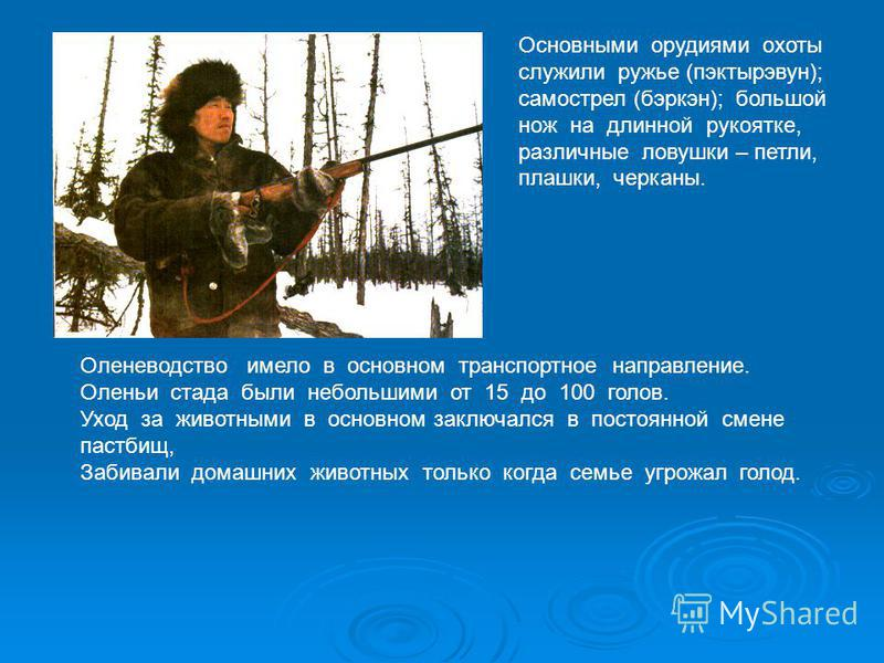 Основными орудиями охоты служили ружье (пэктырэвун); самострел (бэркэн); большой нож на длинной рукоятке, различные ловушки – петли, плашки, черканы. Оленеводство имело в основном транспортное направление. Оленьи стада были небольшими от 15 до 100 го
