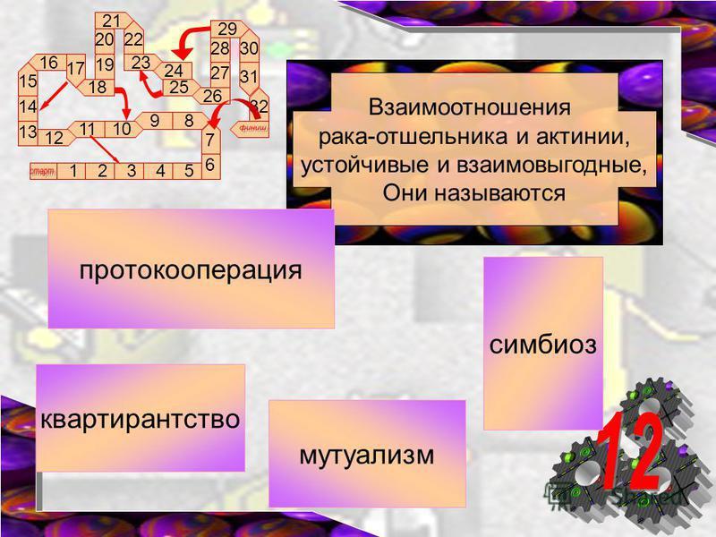 89 1011 12 16 17 18 13 12345 14 15 6 7 19 20 21 22 23 24 25 26 27 28 29 30 31 32 Взаимоотношения рака-отшельника и актинии, устойчивые и взаимовыгодные, Они называются мутуализм квартирантство симбиоз протокооперация