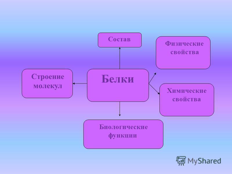 Белки Состав Строение молекул Биологические функции Физические свойства Химические свойства