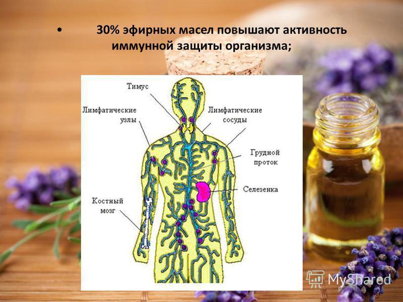 30% эфирных масел повышают активность иммунной защиты организма;