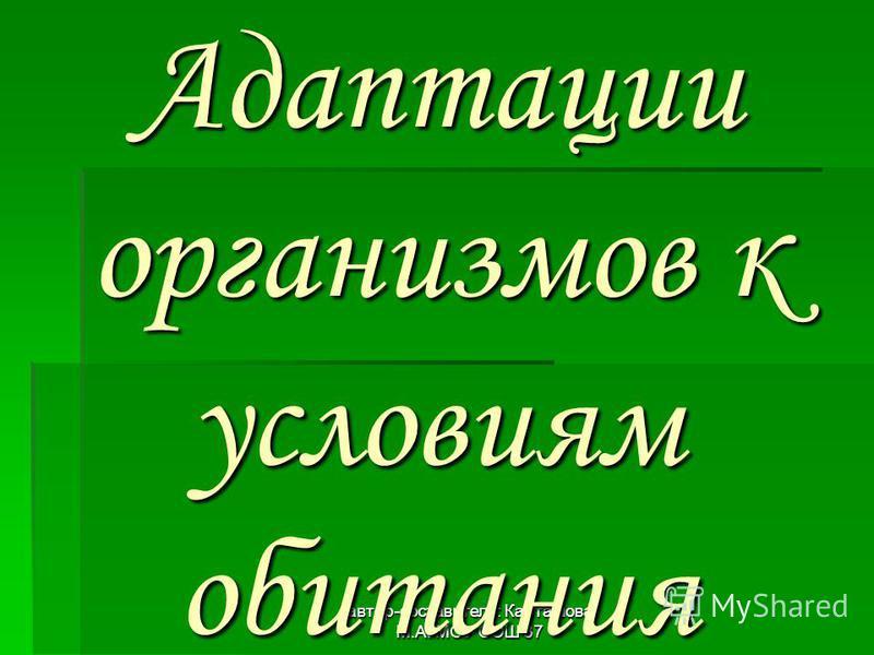 автор-составитель: Карташова М.А. МОУ СОШ 37 Адаптации организмов к условиям обитания