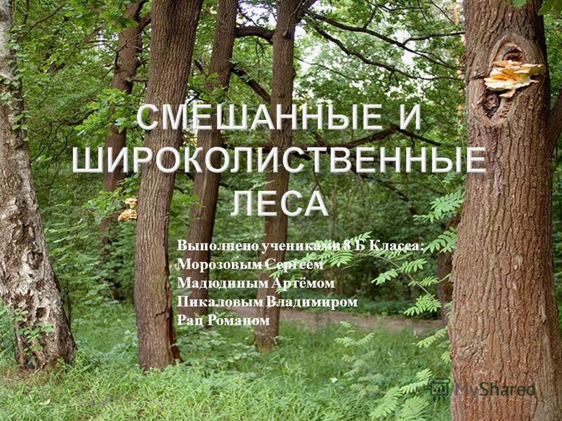 Выполнено учениками 8 Б Класса : Морозовым Сергеем Мадюдиным Артёмом Пикаловым Владимиром Рац Романом