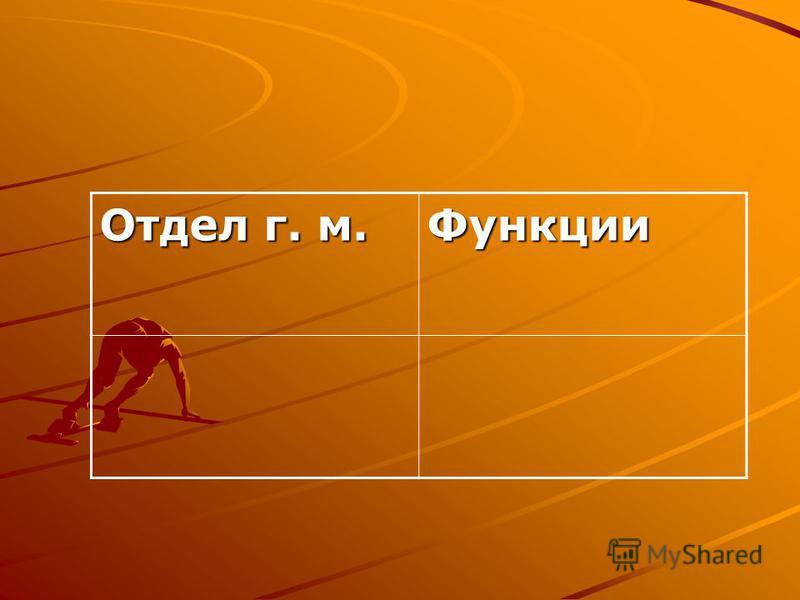 Отдел г. м. Функции