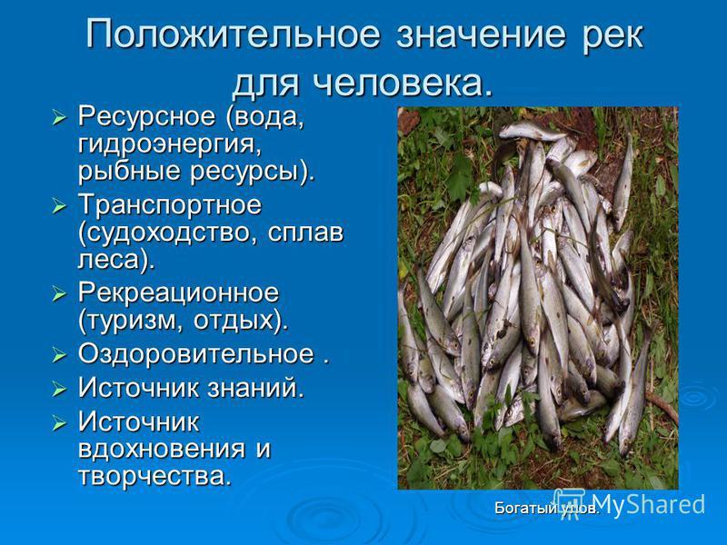 Положительное значение рек для человека. Ресурсное (вода, гидроэнергия, рыбные ресурсы). Ресурсное (вода, гидроэнергия, рыбные ресурсы). Транспортное (судоходство, сплав леса). Транспортное (судоходство, сплав леса). Рекреационное (туризм, отдых). Ре