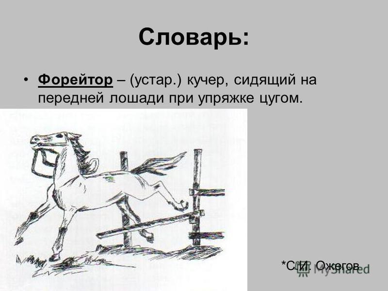 Словарь: Форейтор – (устар.) кучер, сидящий на передней лошади при упряжке цугом. *С.И. Ожегов