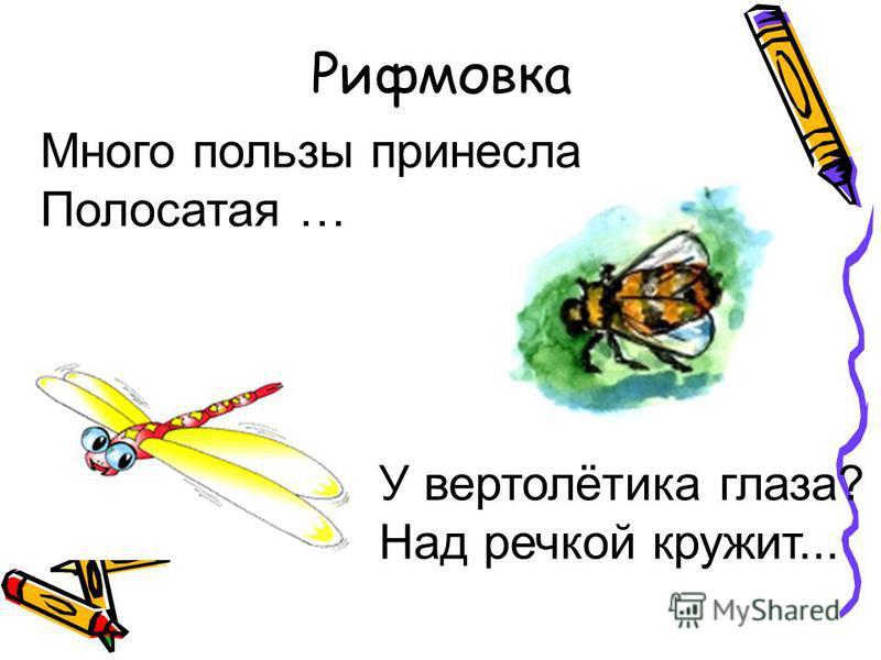 Рифмовка Много пользы принесла Полосатая … У вертолётика глаза? Над речкой кружит...