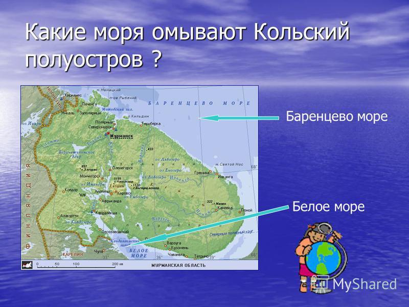Какие моря омывают Кольский полуостров ? Баренцево море Белое море