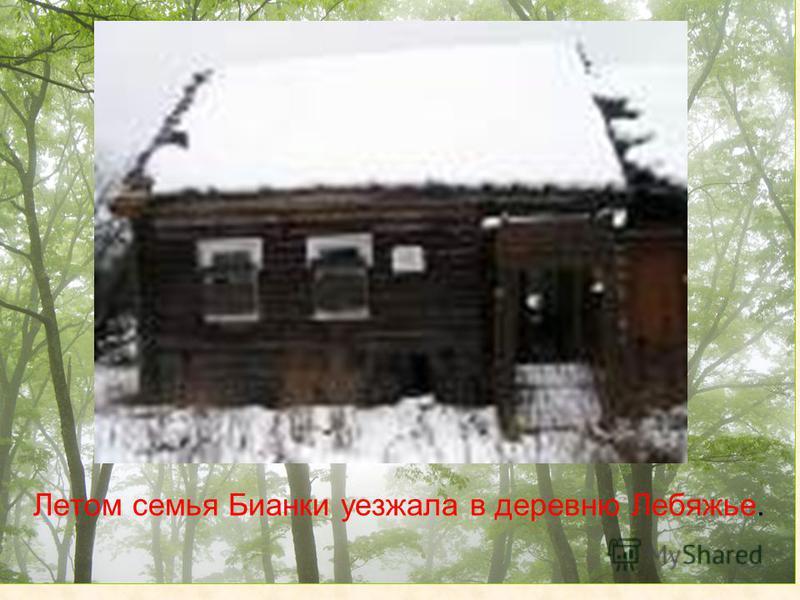 Летом семья Бианки уезжала в деревню Лебяжье.