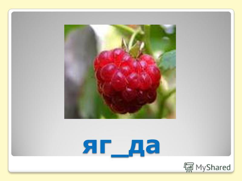 яг_да