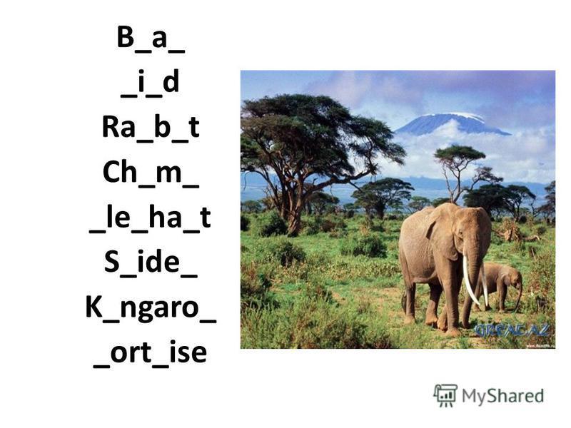 B_a_ _i_d Ra_b_t Ch_m_ _le_ha_t S_ide_ K_ngaro_ _ort_ise