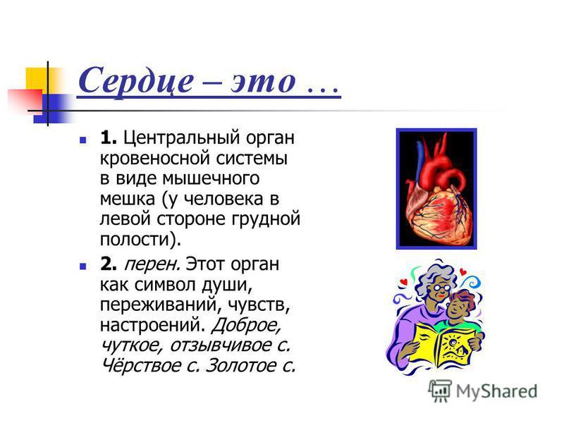 Сердце – это … 1. Центральный орган кровеносной системы в виде мышечного мешка (у человека в левой стороне грудной полости). 2. перен. Этот орган как символ души, переживаний, чувств, настроений. Доброе, чуткое, отзывчивое с. Чёрствое с. Золотое с.