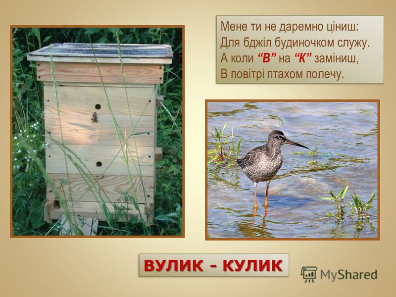 Мене ти не даремно ціниш: Для бджіл будиночком служу. А коли В на К заміниш, В повітрі птахом полечу. Мене ти не даремно ціниш: Для бджіл будиночком служу. А коли В на К заміниш, В повітрі птахом полечу. ВУЛИК - КУЛИК