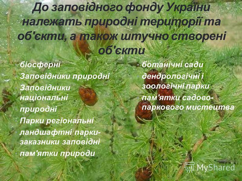 До заповідного фонду України належать природні території та об'єкти, а також штучно створені об'єкти біосферні Заповідники природні Заповідники національні природні Парки регіональні ландшафтні парки- заказники заповідні пам'ятки природи ботанічні са