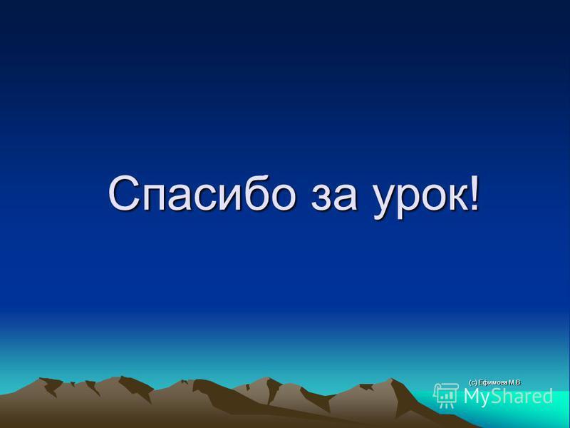 Спасибо за урок! (с) Ефимова М.В.