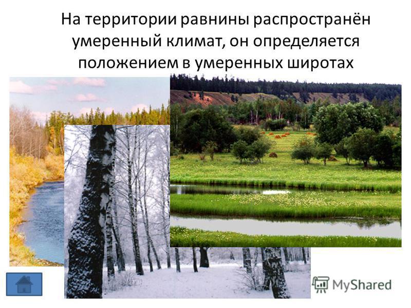 На территории равнины распространён умеренный климат, он определяется положением в умеренных широтах