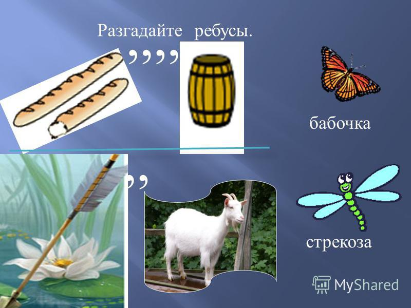 Разгадайте ребусы.,,,,,, бабочка стрекоза