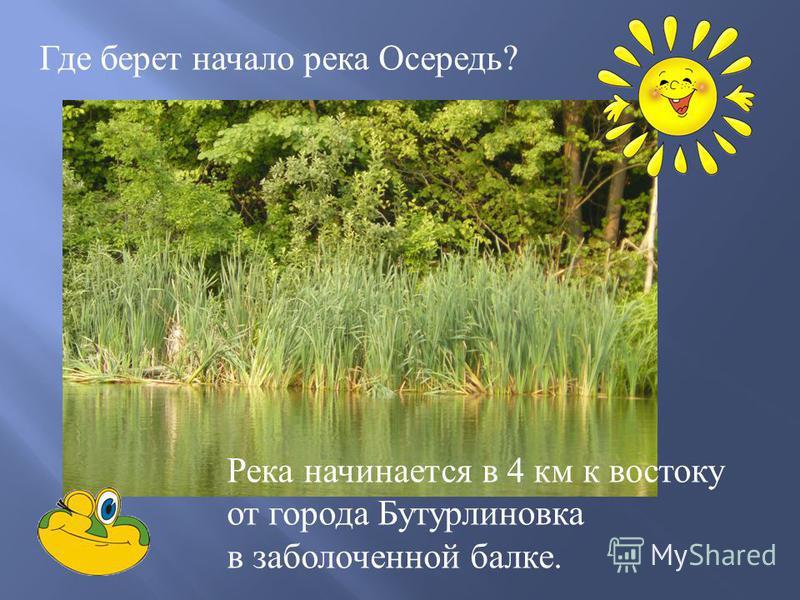 Где берет начало река Осередь ? Река начинается в 4 км к востоку от города Бутурлиновка в заболоченной балке.