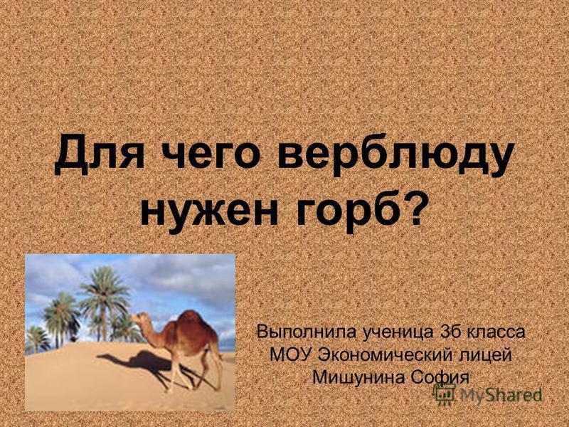 Для чего верблюду нужен горб? Выполнила ученица 3 б класса МОУ Экономический лицей Мишунина София