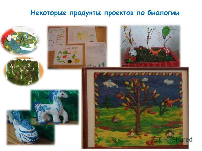 Некоторые продукты проектов по биологии