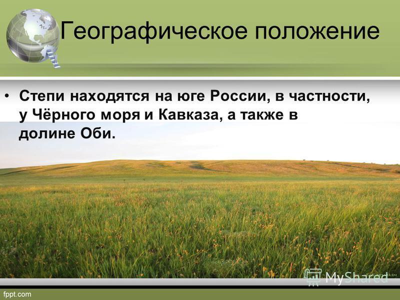 Географическое положение Степи находятся на юге России, в частности, у Чёрного моря и Кавказа, а также в долине Оби.