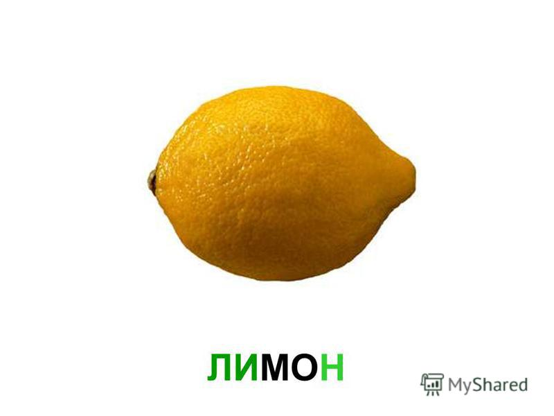 ФРУКТЫ Фрукты 900igr.net