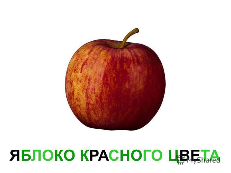 ЯБЛОКО ЗЕЛЁНОГО ЦВЕТА Яблоко зелёного цвета