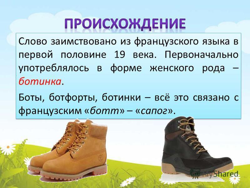 Слово заимствовано из французского языка в первой половине 19 века. Первоначально употреблялось в форме женского рода – ботинка. Боты, ботфорты, ботинки – всё это связано с французским «бот» – «сапог». Слово заимствовано из французского языка в перво