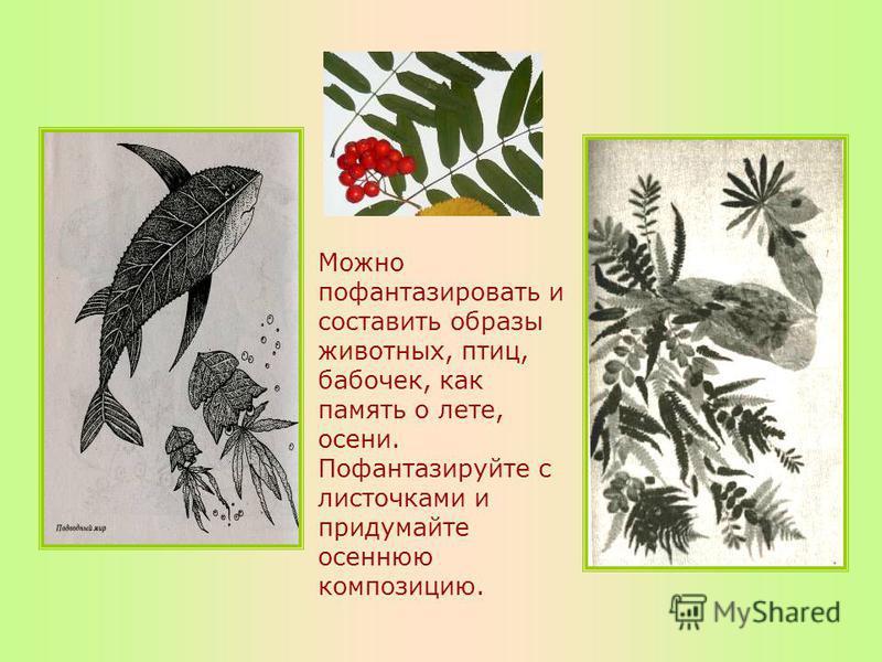 Можно пофантазировать и составить образы животных, птиц, бабочек, как память о лете, осени. Пофантазируйте с листочками и придумайте осеннюю композицию.