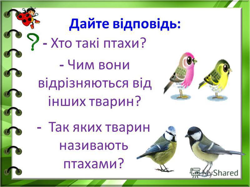 Дайте відповідь: - Хто такі птахи? - Чим вони відрізняються від інших тварин? - Так яких тварин називають птахами?
