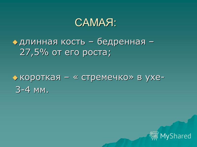 САМАЯ: длинная кость – бедренная – 27,5% от его роста; длинная кость – бедренная – 27,5% от его роста; короткая – « стремечко» в ухе- короткая – « стремечко» в ухе- 3-4 мм. 3-4 мм.