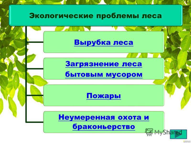 О чём нам расскажут экологи…