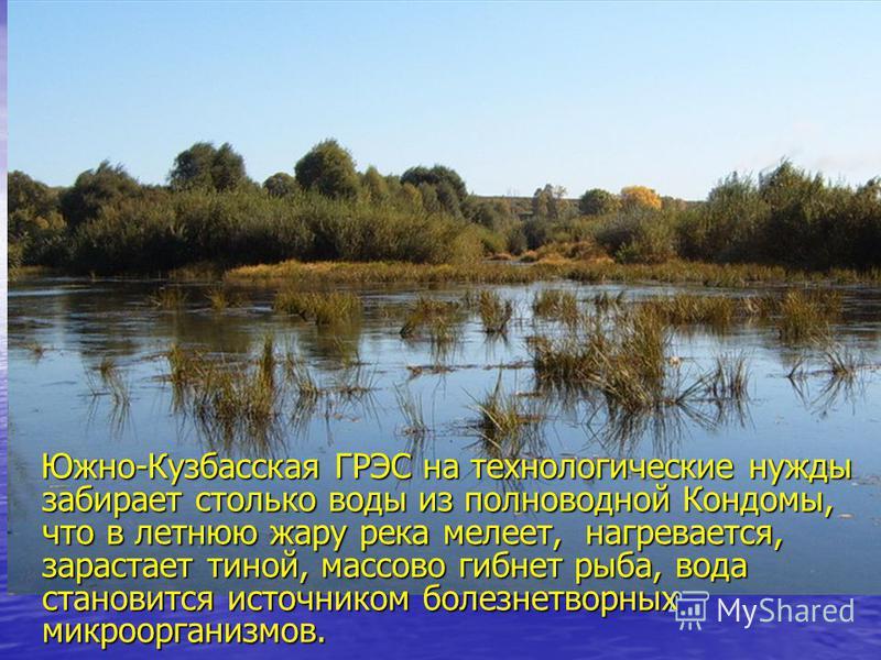 Южно-Кузбасская ГРЭС на технологические нужды забирает столько воды из полноводной Кондомы, что в летнюю жару река мелеет, нагревается, зарастает тиной, массово гибнет рыба, вода становится источником болезнетворных микроорганизмов. Южно-Кузбасская Г