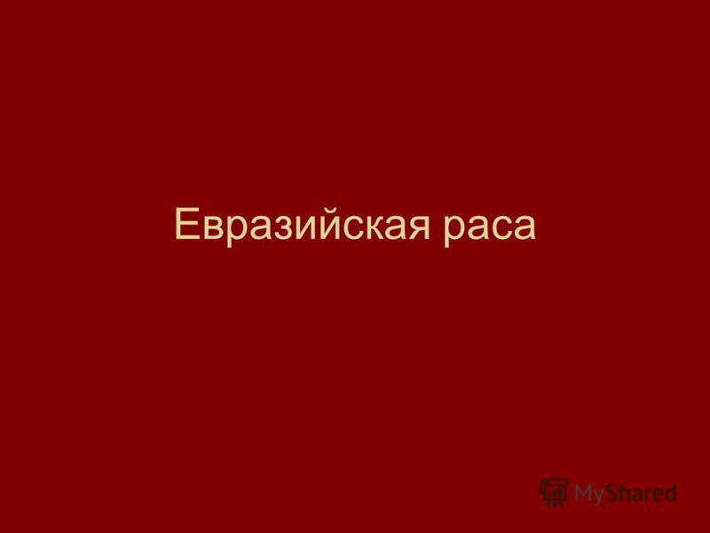 Евразийская раса