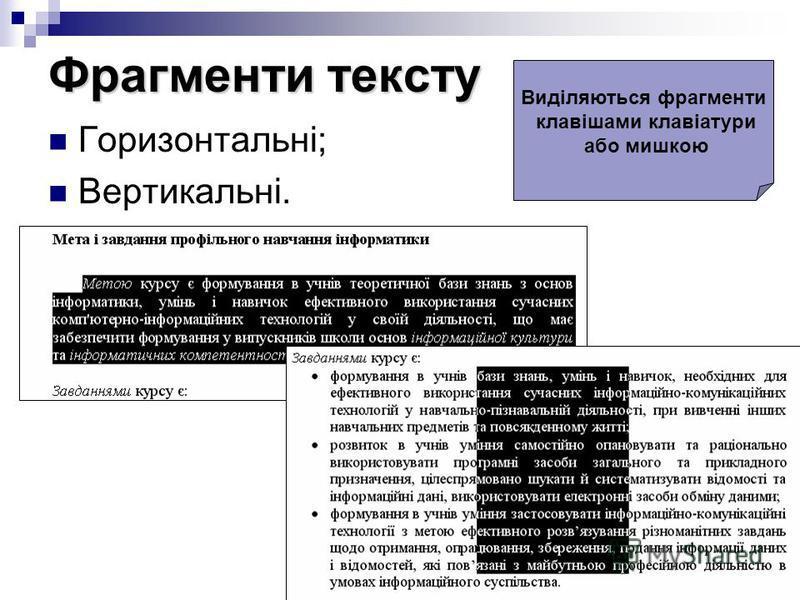 Фрагменти тексту Горизонтальні; Вертикальні. Виділяються фрагменти клавішами клавіатури або мишкою